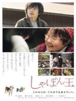 [日] 肥皂泡 (Where I Belong) (2017)