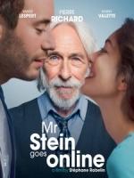 [法] e外愛上妳 (Mr.Stein Goes Online) (2017)[台版字幕]