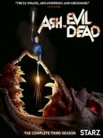 [英] 鬼玩人 第三季 (Ash vs Evil Dead S03) (2018) [Disc 2/2]
