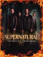 [英] 超自然檔案 第12季 (Supernatural S12) (2016) [Disc 1/3]