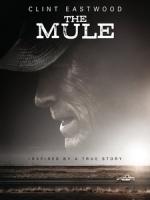 [英] 賭命運轉手 (The Mule) (2018)[台版]