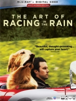 [英] 我在雨中等你 (The Art of Racing in the Rain) (2019)[台版字幕]