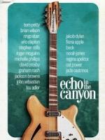 [英] 峽谷中的回音 (Echo in the Canyon) (2018)[台版字幕]